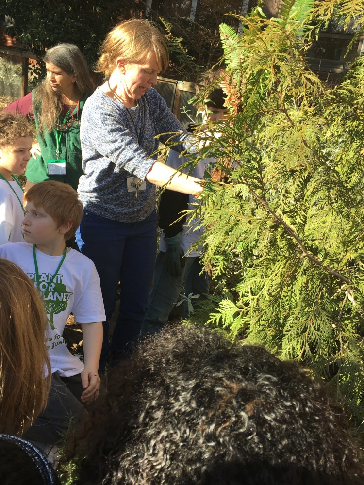 Ambassadors Planting with Joanie Levine and Steph Rooney